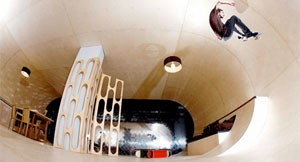 Etnies Skateable House