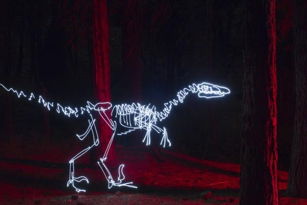 """""""Velociraptor"""" - Darren Pearson - Lake Arrowhead, CA"""