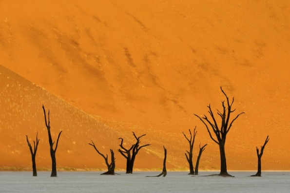 "Marsel van Oosten - ""The Valley of Death"""