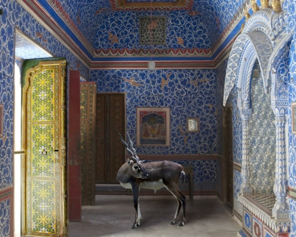 "Karen Knorr - ""India Song"""